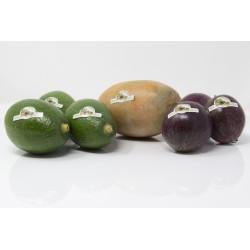 Caja Surtida de Mango + Aguacate + Maracuya