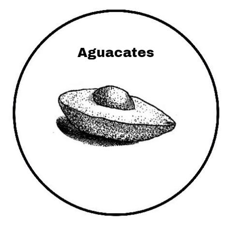 AGUACATES.jpg